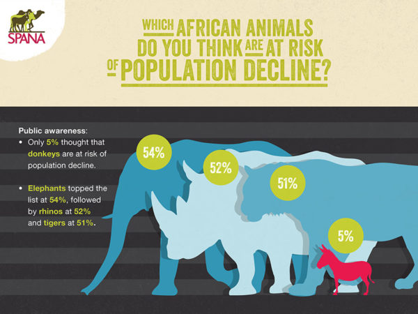 Infographics on only 5 per cent thought donkeys were at risk of population decline