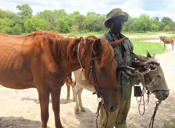 Horses Lesedi and Bontle with their owner