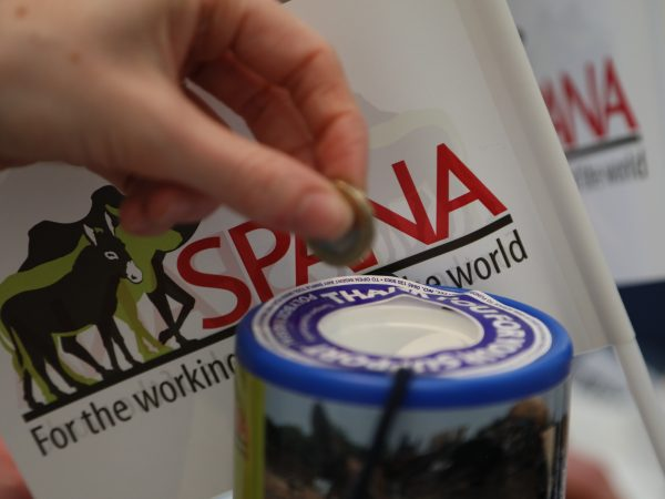 Person donating to SPANA at a fundraising event